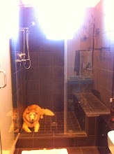 Photo: From the tub looking at the shower, which has a bench seat, a casement window, two cubbies for storage , and an overhead rain shower and also side faucet on cord. Honey the husky knows that shower tile is cool. This is her favorite place.