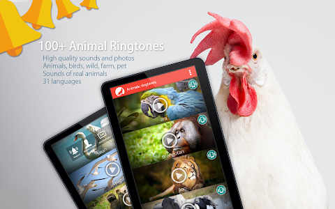 Animals: Ringtones screenshot 5