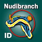 Nudibranch ID Western Atlantic icon
