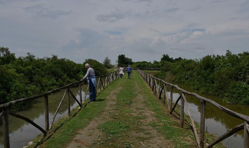 Passeggiata nella laguna di Wilmanna