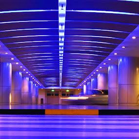 Public Car Park by Beng Lim - Buildings & Architecture Public & Historical ( abstract, car, lighting, park, blue, futuristic, future, underground, light )