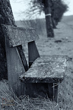 Photo: A bench for the saturday, I hope all of you by G+ have a good saturday.   It is for #BenchSaturday   curated by +Rainer M. Ritz