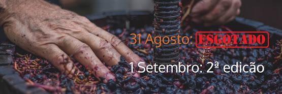 Como fazer o meu Vinho Biológico 2ª edição – 1 Setembro 2019