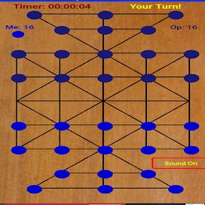 sholo guti(ষোল গুটি)-sixteen beads-tiger trap 1 2