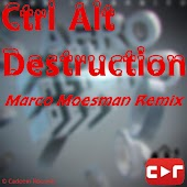 Ctrl Alt Destruction (Reazon Remix)