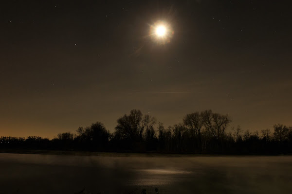 E la Luna bussò.. di Dave13589