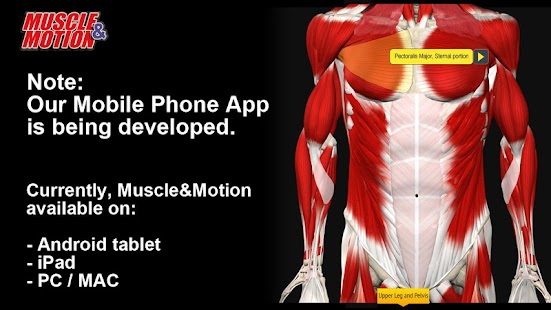 Muscle and Motion - Strength- screenshot thumbnail