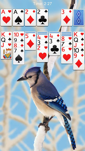 Solitaire 2.9.504 screenshots 5