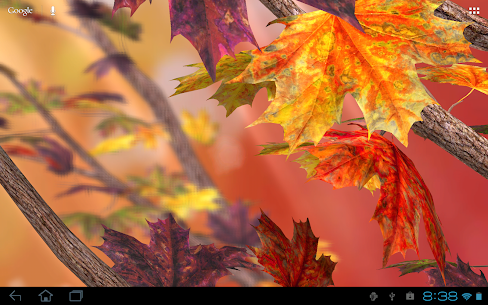 Autumn Tree Free Wallpaper Apk  Download For Android 5