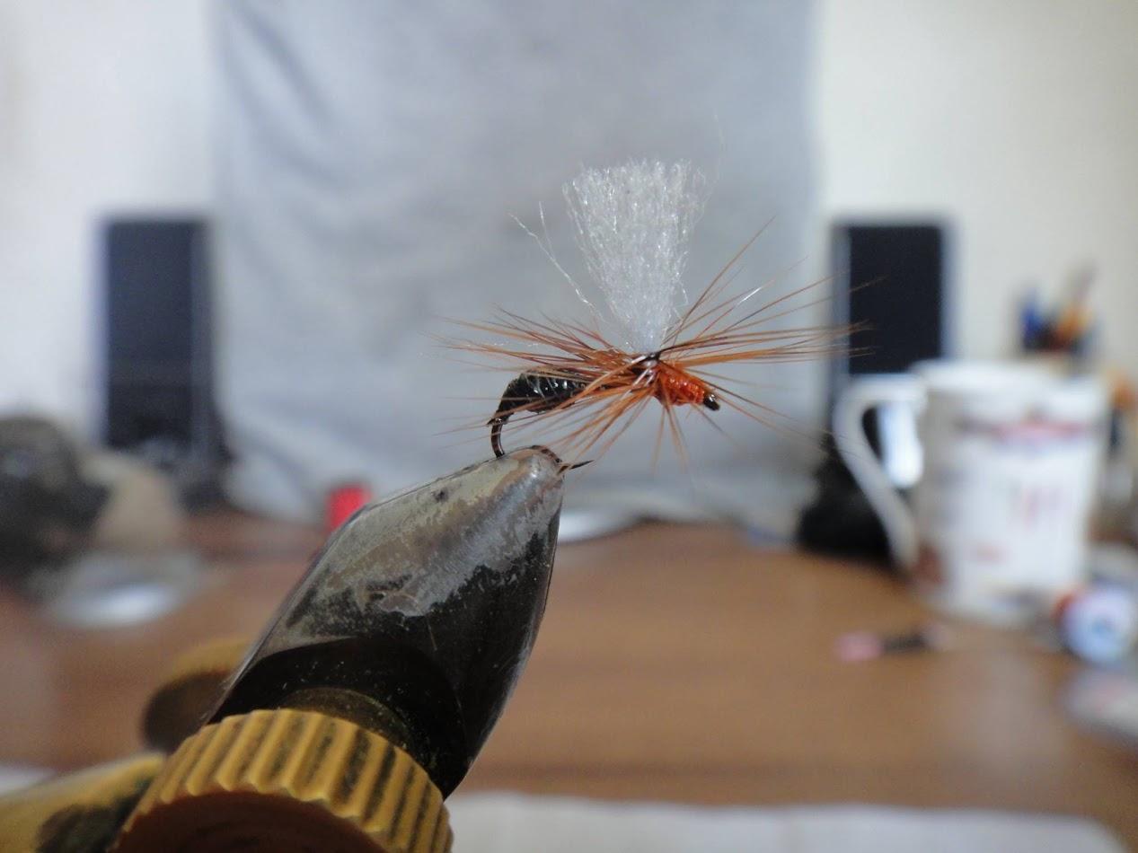Езерната мравка на Данчо Савов