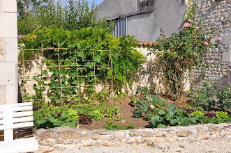 Photo: le potager de madame