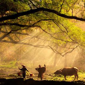 by Justin Ng - Landscapes Travel