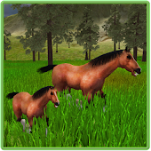 Ultimate Horses of the Forest