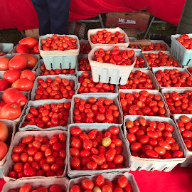 Tomatoes  by Mary Danihel - Food & Drink Fruits & Vegetables