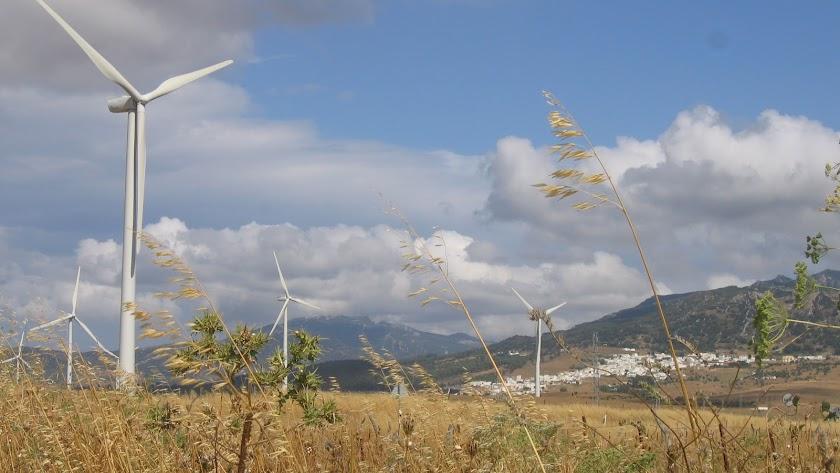 Así lo refleja la publicación Datos Energéticos de Andalucía 2018.