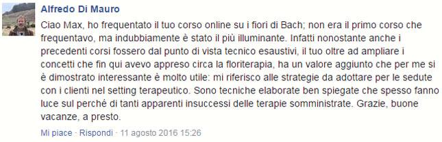 corso online fiori di Bach commenti opinioni 07
