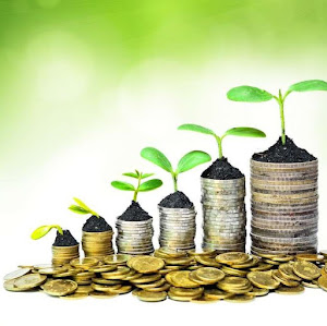Money increasing with the correct Capital investment