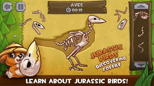 Jurassic Birds: Fossils