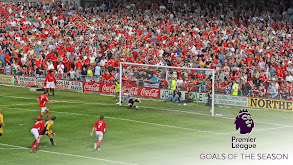 Premier League Goals of the Season thumbnail