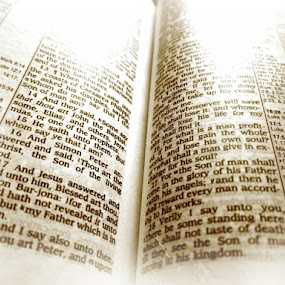 the Bible by Prerna  R - Artistic Objects Other Objects
