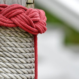 Nautical Knots  by Lorraine D.  Heaney - Artistic Objects Other Objects