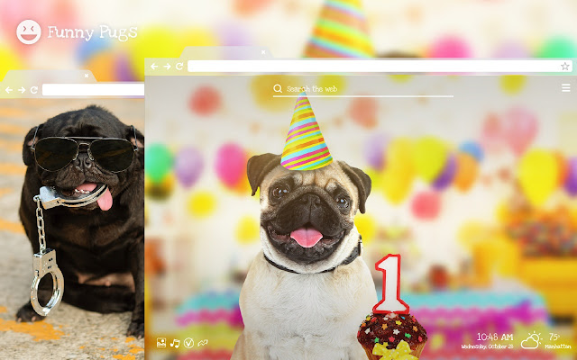 Funny Pugs - Amusing Dog & Puppy HD Theme