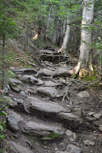 Photo: Root and stone steps at  Camel's Hump State Park by Kara Chester