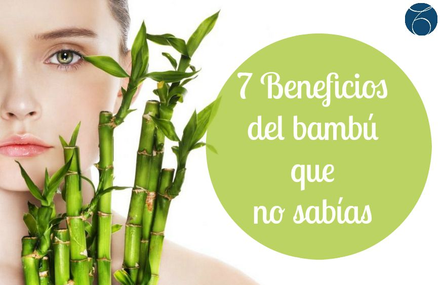 bambu_piel_belleza.JPG