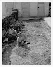 Photo: Back Garden 30 Glebe Meadow 1960's
