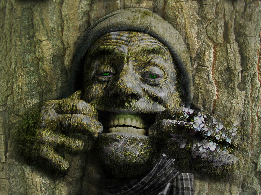 Me in a Tree by Peter Wolledge - Digital Art People ( bark, treee, portrait )