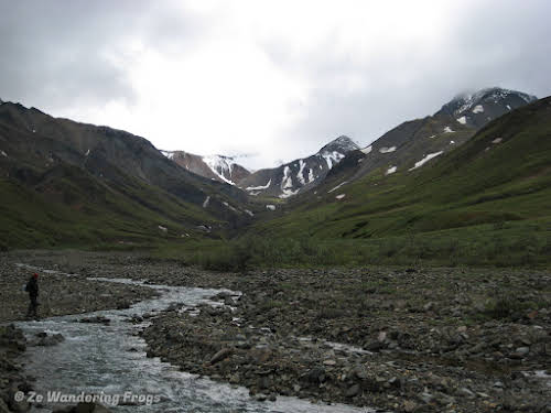 Things to Do in Denali National Park Alaska // denali national park ranger-guided hike in the wilderness