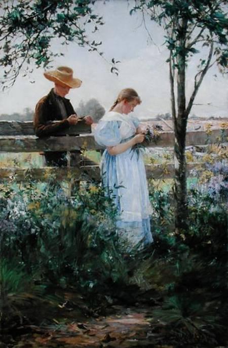 http://lh6.google.com/banshee206/RohKhCGhbzI/AAAAAAAABNc/XU4fnMHrYE4/s800/country_romance_cog172167_hi.jpg