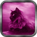 Pink Cat Live Wallpaper icon