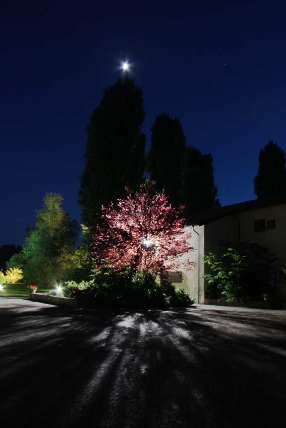 Notturno di primavera di riky
