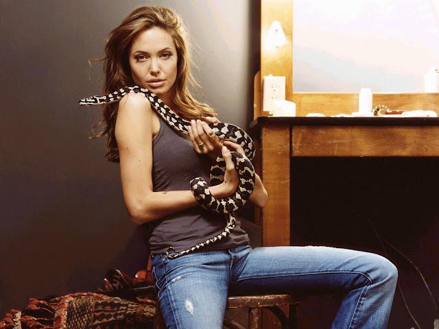 Angelina Jolie Angelina%20Jolie%2013.jpg AngelinaJolie -  http://henku.info