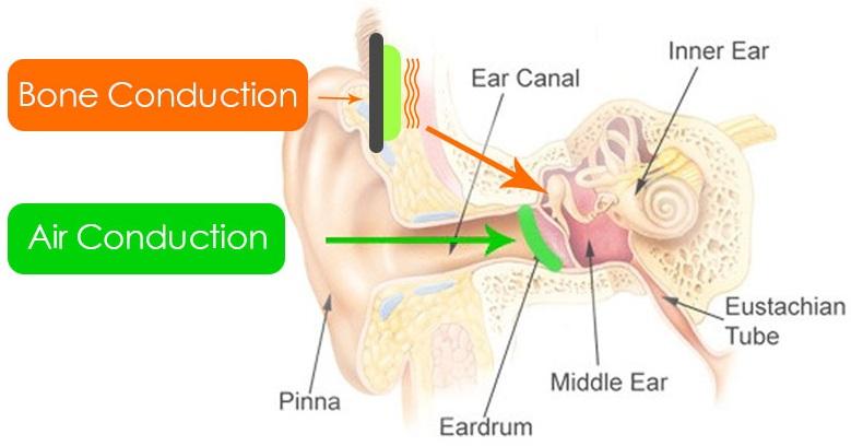 Bone Conduction vs Air Conduction
