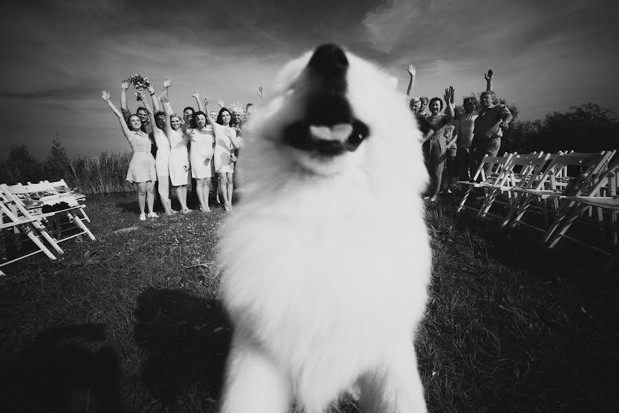 Esküvői fotós Александр Муравьёв (alexmuravey). Készítés ideje: 21.07.2016