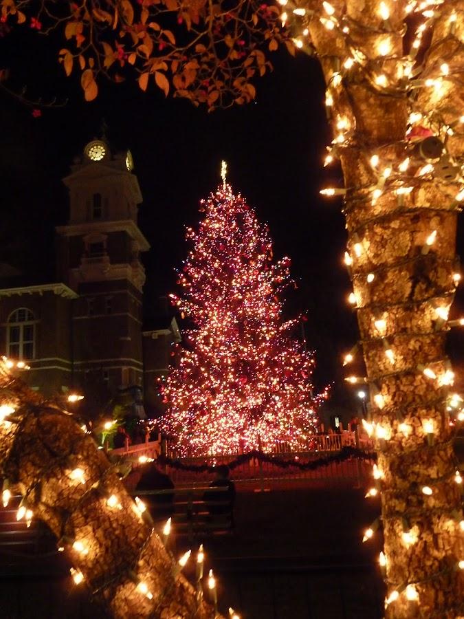 by Michael Hood - Public Holidays Christmas