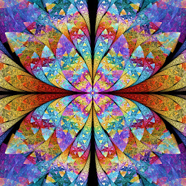 Bipolar ESplits Butterfly by Peggi Wolfe - Illustration Abstract & Patterns ( digital, gift, splits, color, wolfepaw, jwildfire, bright, pattern, abstract, décor, print, butterfly, unique, fractal, illustration, bipolar, unusual, elliptic, fun )