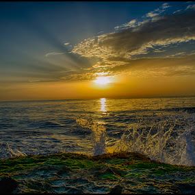 Morning Surf by Brian Rogers - Landscapes Sunsets & Sunrises ( sunrises, seascapes, waves, ocean, ocean view )
