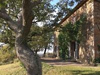 Casa Vacanze Podere Santa Pia, terrazza