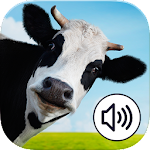 Farm Animals Sound Bingo Icon