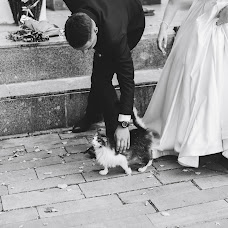 Wedding photographer Artem Minokhov (Minokhov). Photo of 06.12.2018