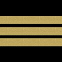 Pilot View icon