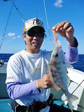 """Photo: あいたー。 フエフキ。長崎では""""クチビ""""。引きは、真鯛に似ているんですが・・・。"""