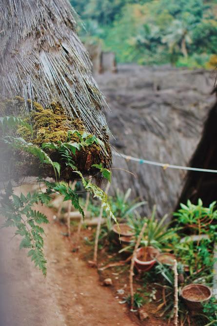 blog tentang kampung naga