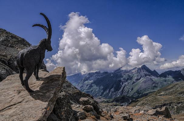 Il guardiano delle montagne di Livius
