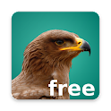 Happy Birding Journal - (FREE) icon