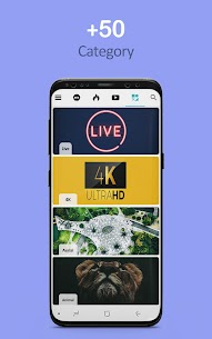 Live Wallpapers 4K & HD Backgrounds Everpics Apk Latest Version Download For Android 8