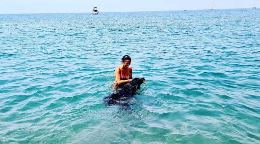 Marta Bosquet estrena la nueva playa canina de El Bobar con su perro Zambra